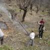 Il faut brûler les feuilles entassées